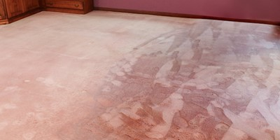 Preventing Mould Growth in Soaked Carpet