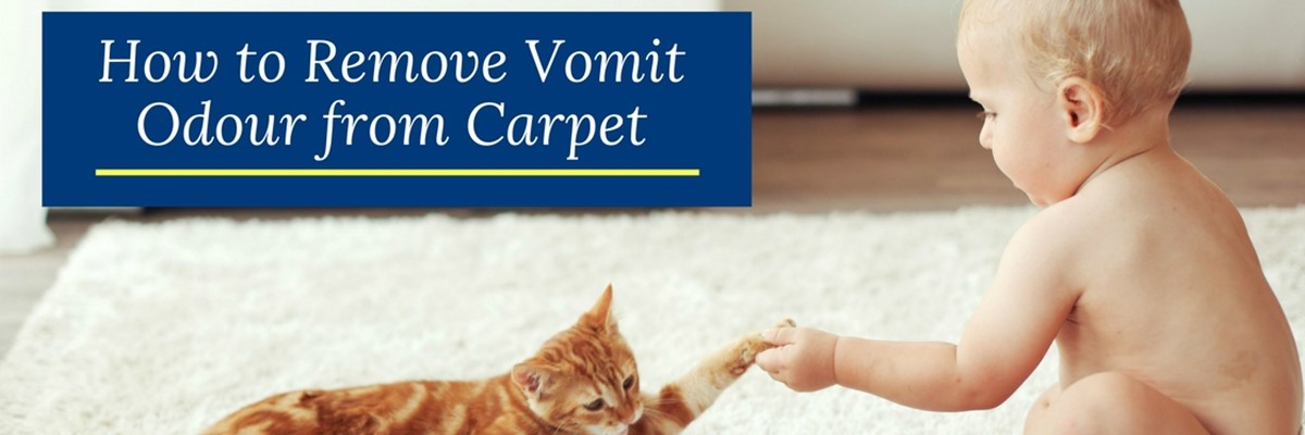 How to Remove Vomit Odour from Carpet